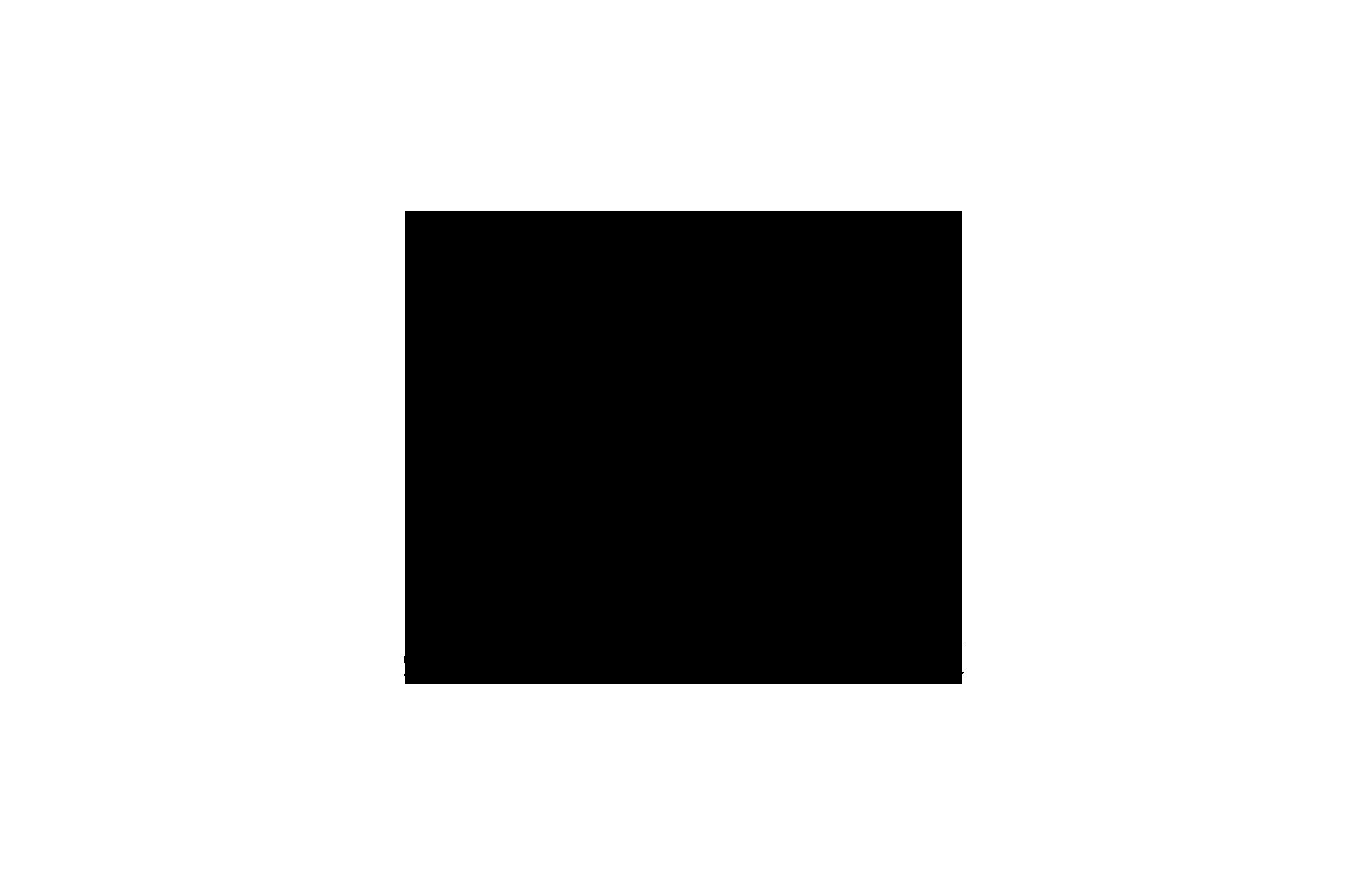 Lichtstadt Feldkirch Partner Schertler Logo